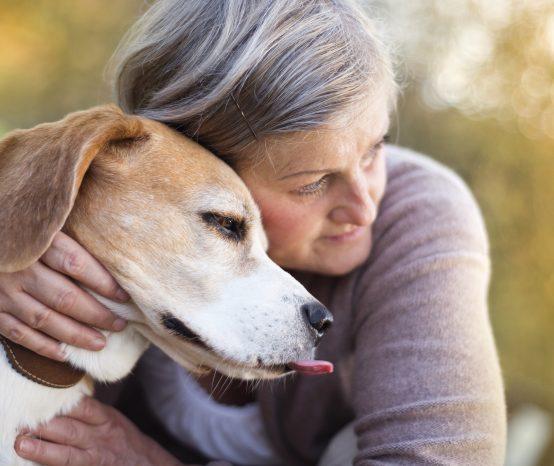 A relação dos animais com idosos